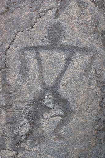 Hawai'i Volcanoes National Park : petroglyphs